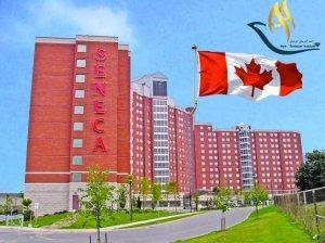 کالج سنکای کانادا