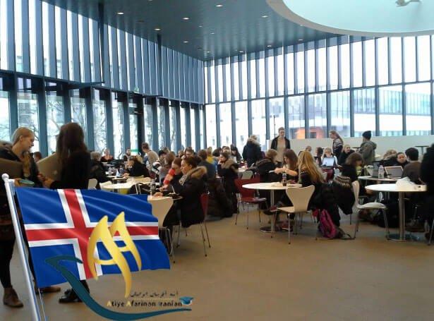 دانشگاه ایسلند