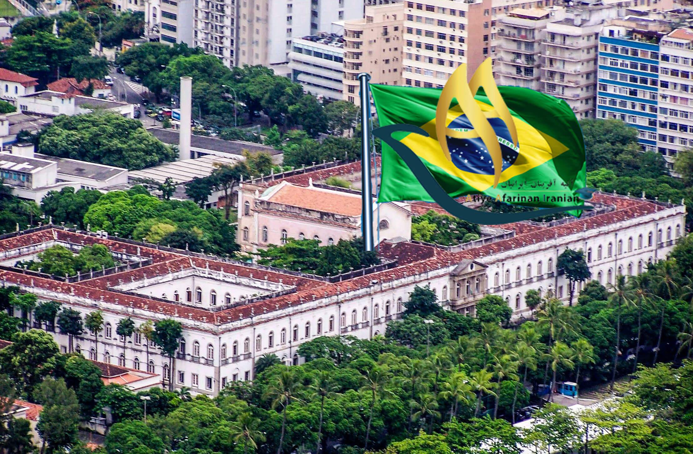 دانشگاه ریو برزیل