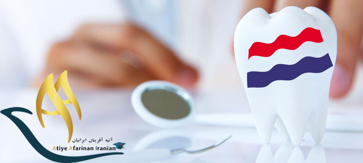 تحصیل دندان پزشکی در هلند
