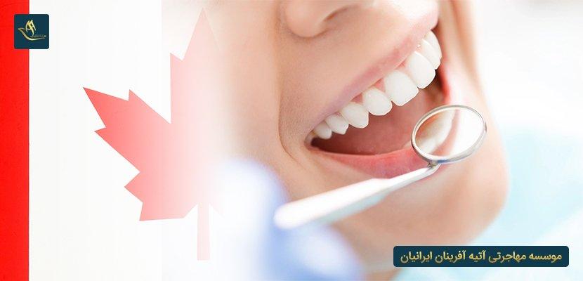 هزینه تحصیل دندان پزشکی