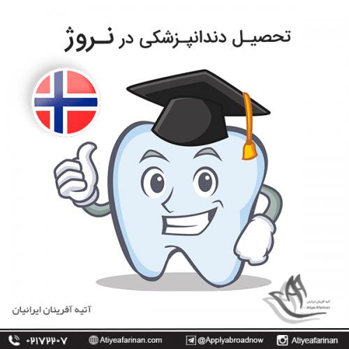 تحصیل دندانپزشکی در نروژ