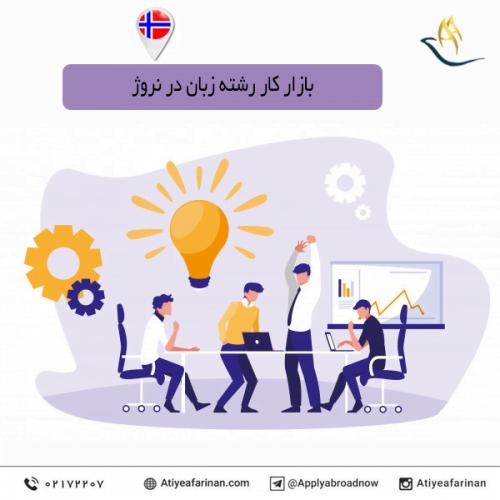 The Norwegian language labor market