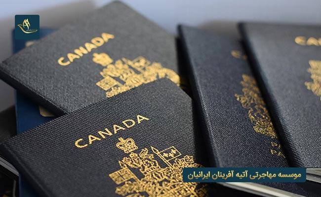 مهاجرت از طریق ویزای استارتاپ کانادا و شرایط عمومی